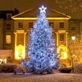 Χριστουγεννιάτκα δέντρα